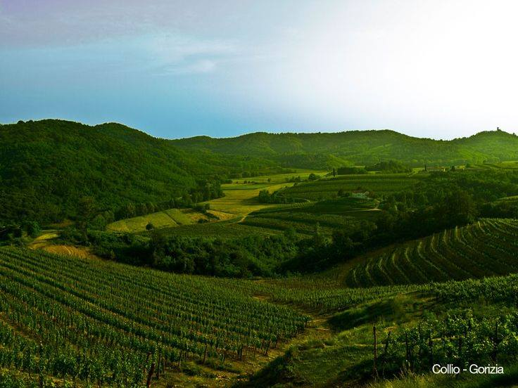 Attems Ramato Pinot Grigio 2012