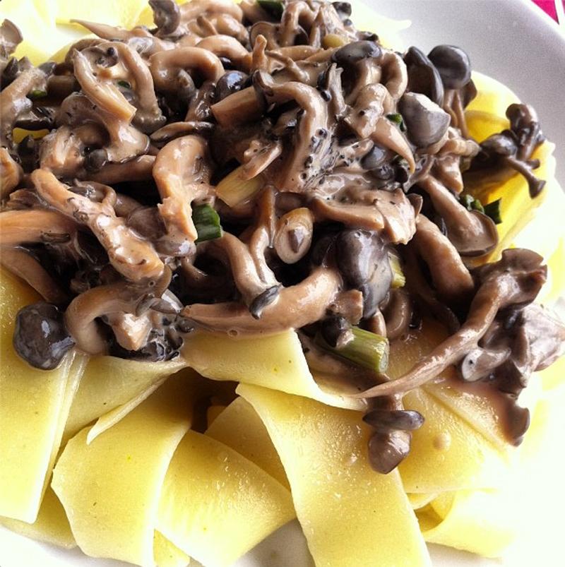 Menu de Baco – Pappardelle ao ragú de cogumelos