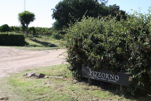 Um giro pelo Uruguai – Bodega Pizzorno