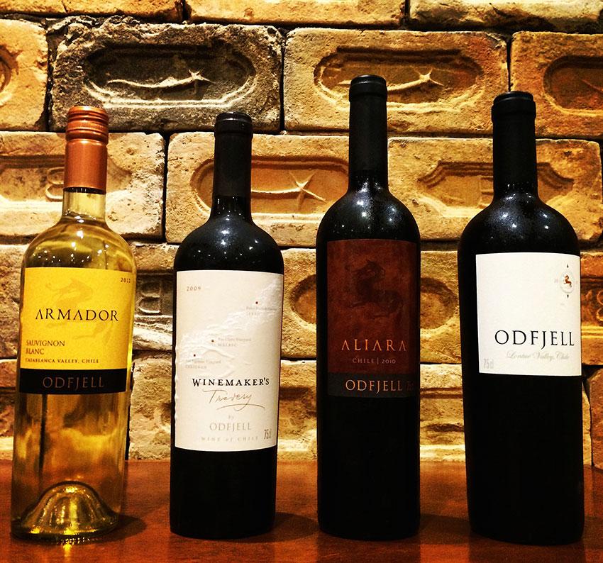Você já bebeu vinhos biodinâmicos?