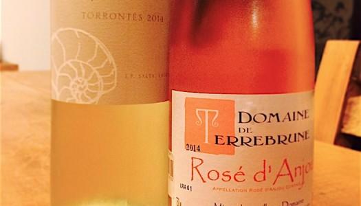 Um clube de vinho especial para o Verão