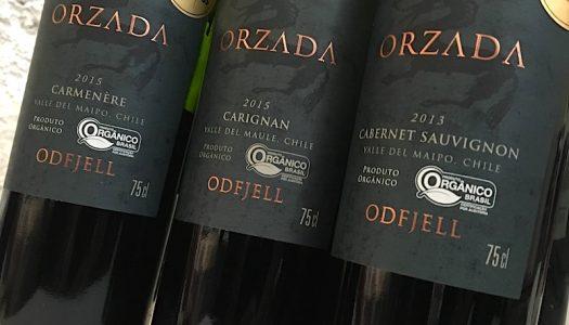 Entre tantos bons vinhos da vinícola Odfjell, o destaque ficou para a carignan